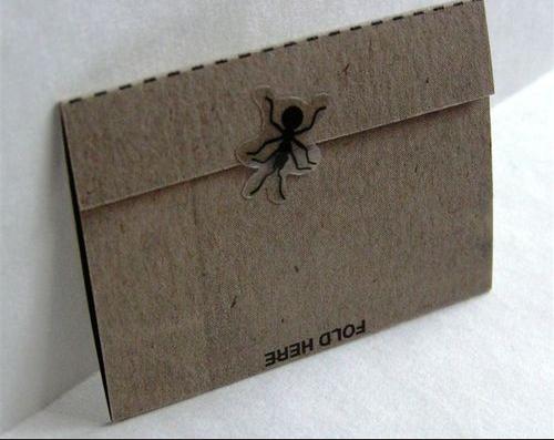 Bạn phải được sự cho phép của chú nhện này mới có thể mở được điều bí mật ẩn dấu bên trong của chiếc phong bì ( bì thư)